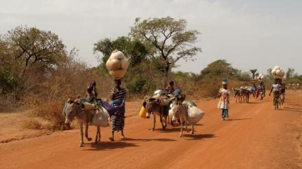 mali-nomadi-peul